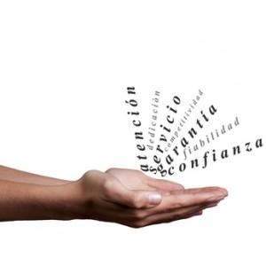 Cómo encuentrar el éxito especializándote en un área determinada